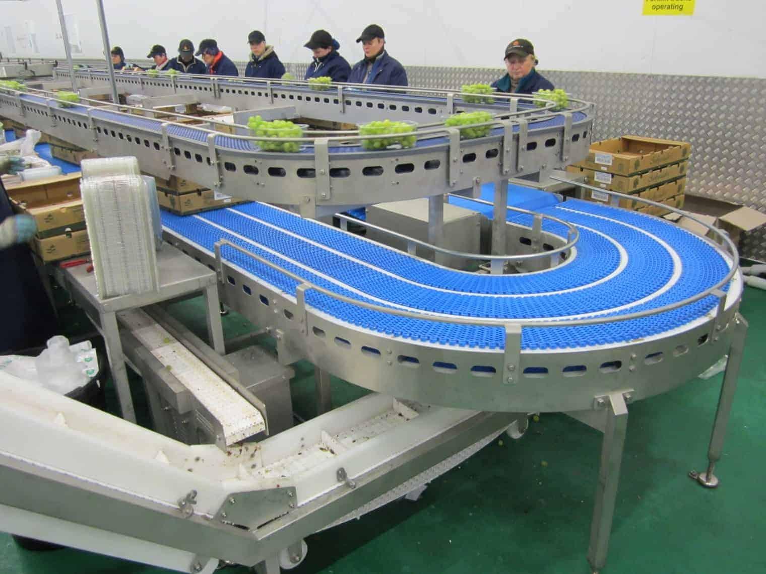 Stainless conveyor