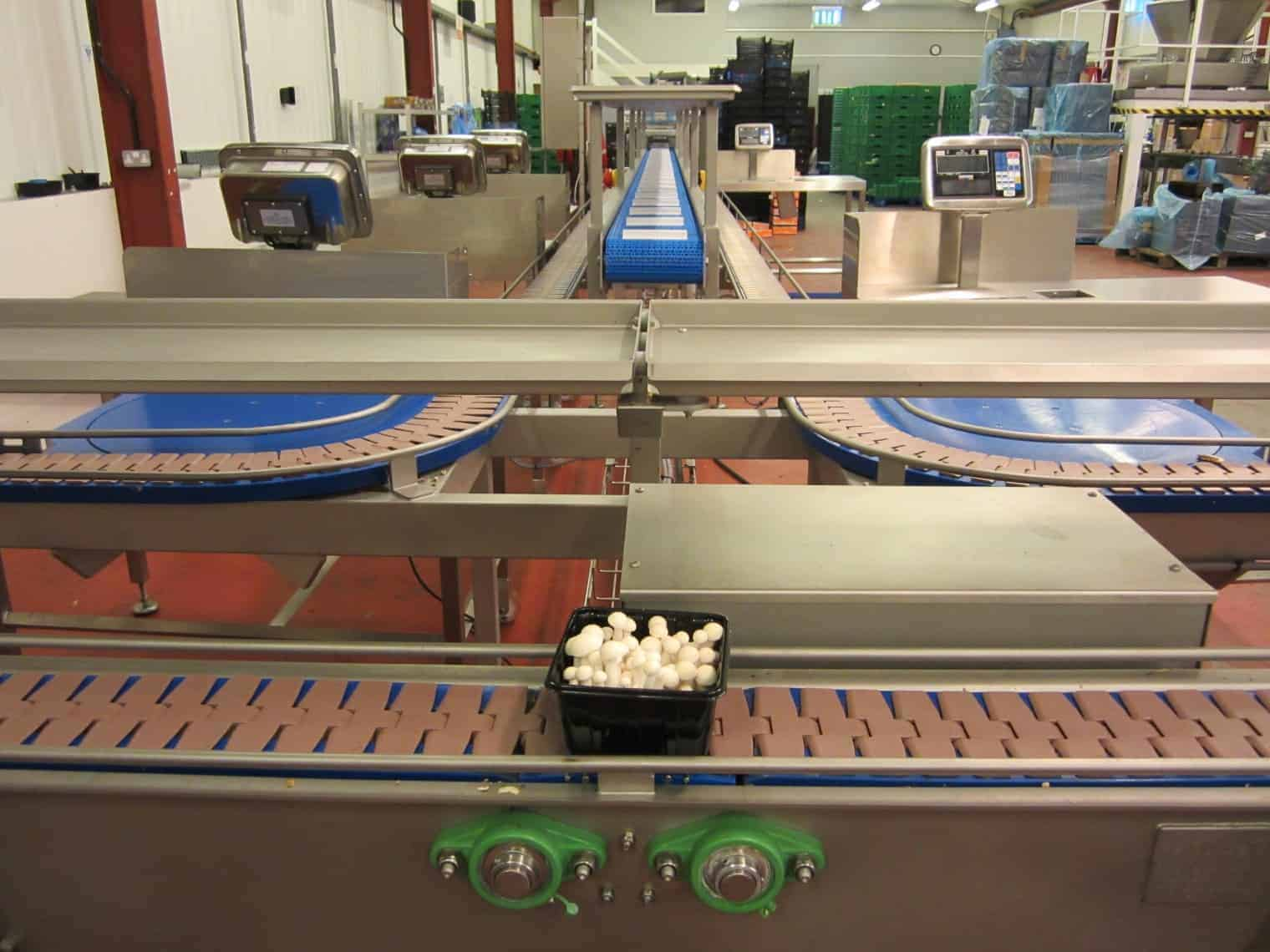 Instalion of food processing Slat Conveyor